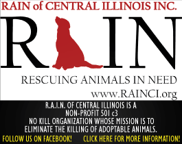 RAIN of Central Illinois.  Rescuing Animals In Need.  www. rainci.org
